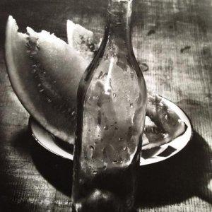 Josef Sudek – 1.1. Zátiší, 1955