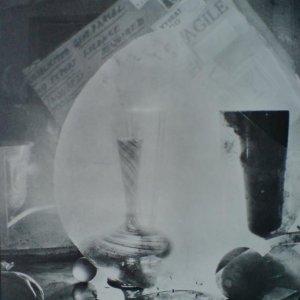 Josef Sudek – Vzpomínka na doktora Brumlíka 1969
